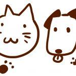 イラストの描き方~身近な動物「犬猫」を描いて見よう!!