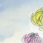 日本の花「菊」の描き方