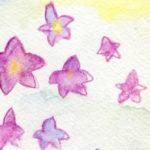 袋をイメージ?一風変わった花「桔梗」の描き方